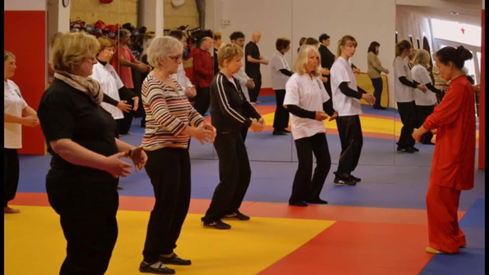 Federation wushu France  Ligue Occitanie