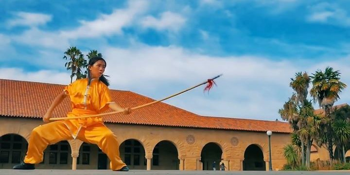 The Art Of Wushu
